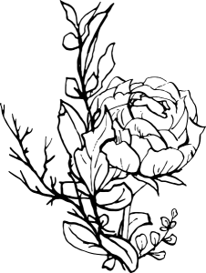 line drawing of a floral arrangement