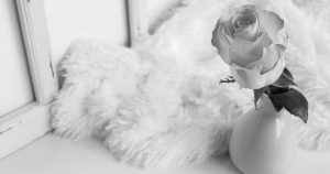 rose in a vase with with fur behind it